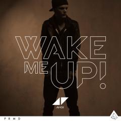 Avicii Wake me up video ufficiale